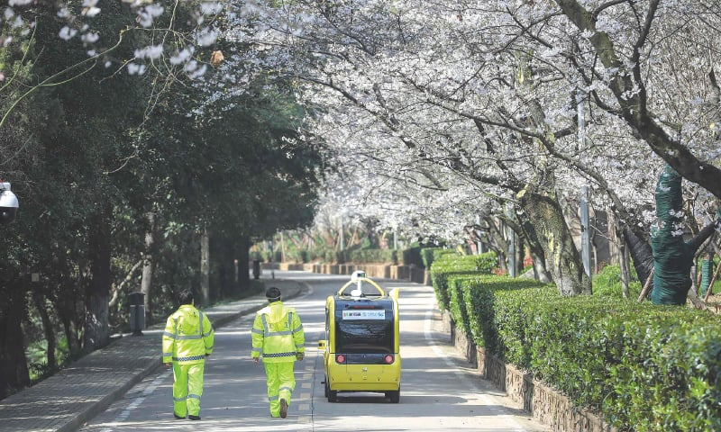 Wuhan: A driverless vehicle broadcasts live images of cherry blossoms at China's Wuhan University. Since the campus, well known for its cherry blossoms countrywide, is closed due to the coronavirus, it now livestreams the trees every day.—AFP