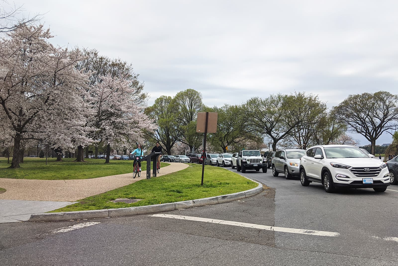 Tidal Basin, Washington, DC: Most people refuse to leave their cars to experience the cherry blossoms in bloom. - Picture by Author