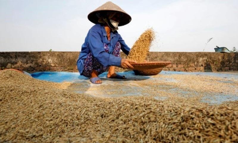 یہ وقت خوراک کی ترسیل روکنے کا نہیں، نمائندہ اقوام متحدہ—فوٹو: رائٹرز
