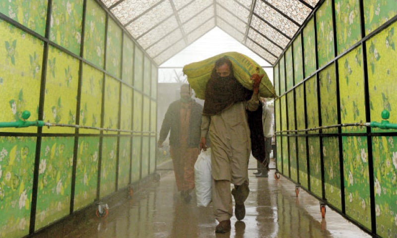 A man carrying a sack of onions walks under a 'Disinfection Walk-through Gate' installed at Islamabad's Fruit and Vegetable Market in I-11. The initiative is part of the ICT administration endeavour to contain the spread of coronavirus. — Photo by Mohammad Asim
