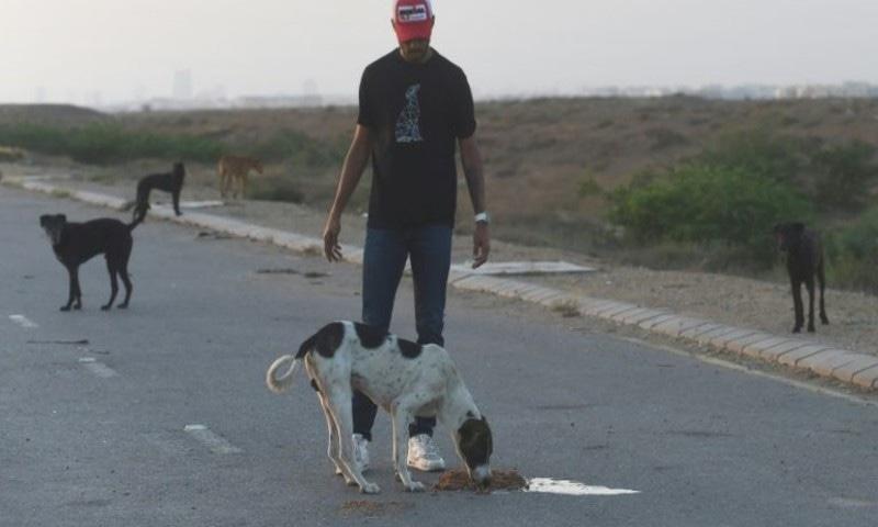 کراچی کی متعدد دکانوں میں جانور و پرندے مردہ پائے گئے—فوٹو: اے ایف پی