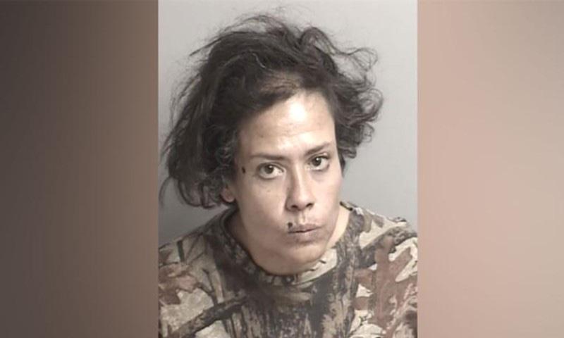 خاتون کو گرفتار کرکے جیل بھجوادیا گیا—فوٹو: سی این این