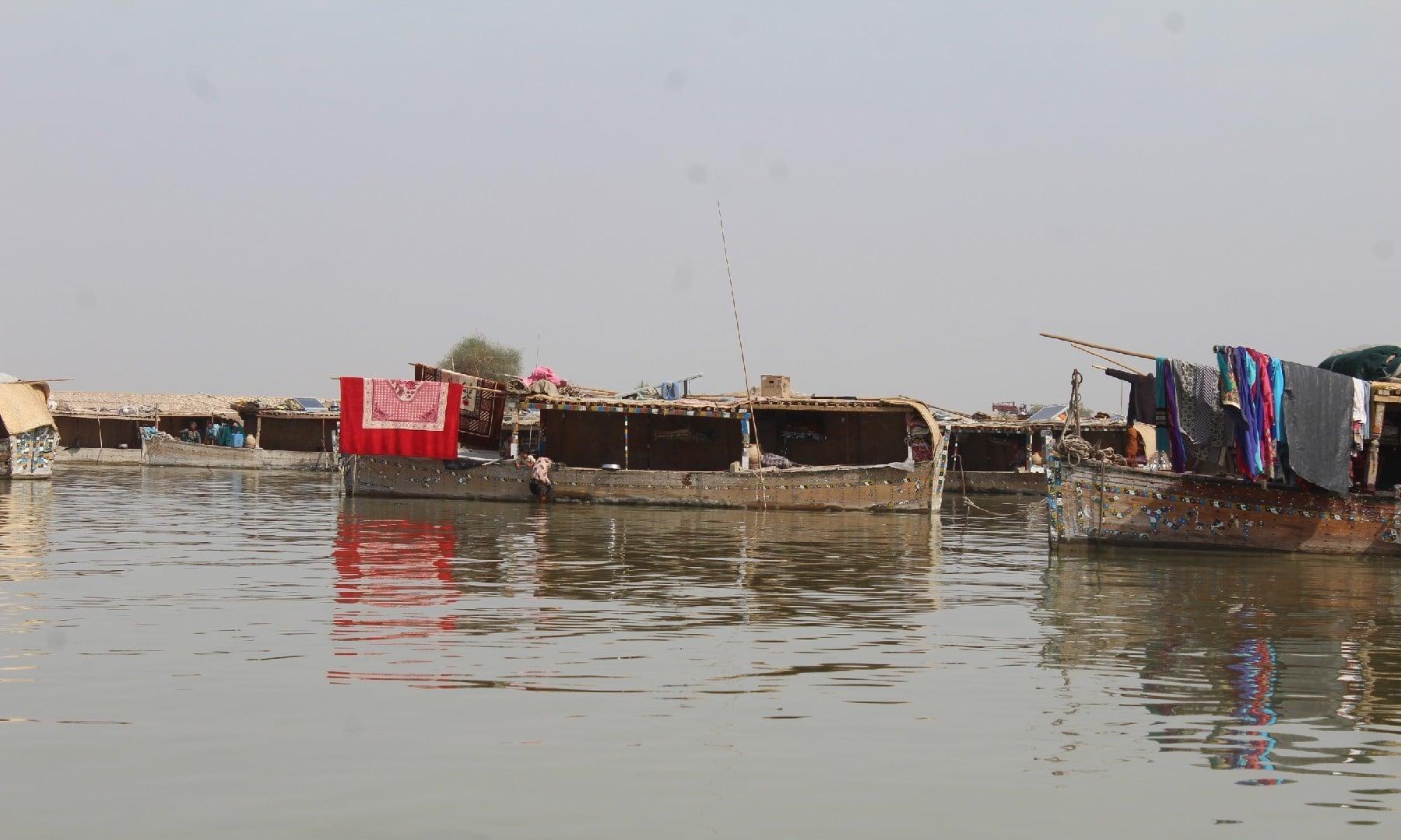 منچھر جھیل —ابوبکر شیخ