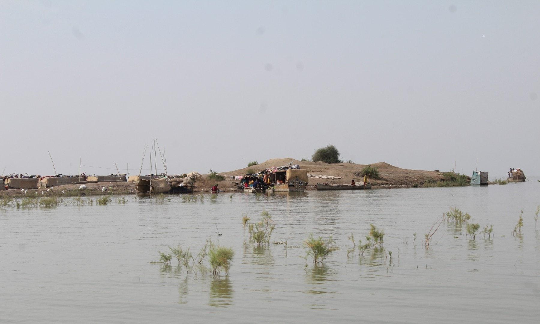 منچھر جھیل—ابوبکر شیخ