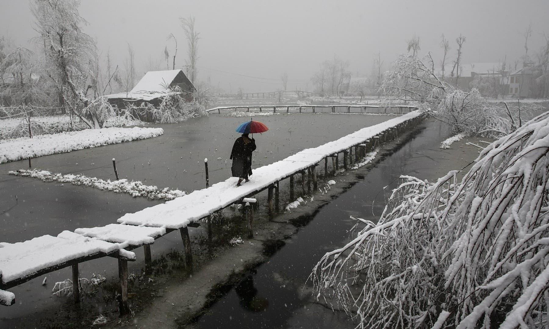 A Kashmiri man walks on a snow covered footbridge as it snows in the interiors of Dal Lake in Srinagar on December 13, 2019. — AP/Dar Yasin