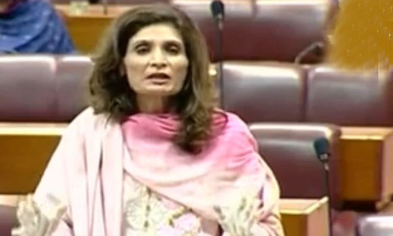 Pakistan's outbreak would've been worse had PPP or PML-N been in govt: Andleeb
