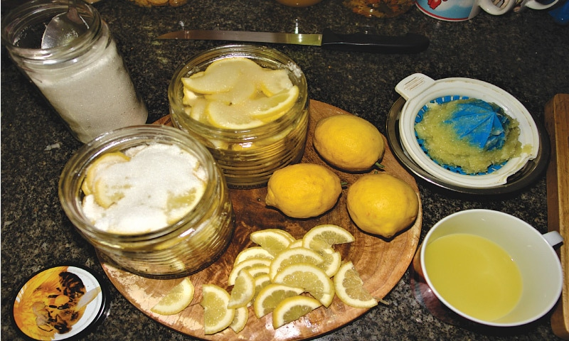 Preserving sweet lemons | Photo by the writer