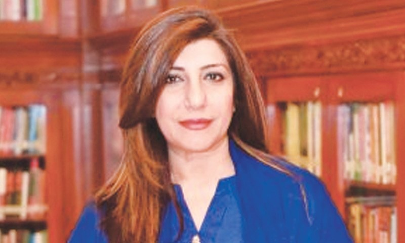 Rejects Indian comments on Diamer-Bhasha dam. — APP/File