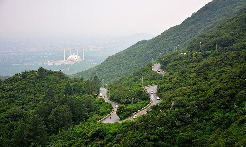 Management of Monal were felling trees for expansion and construction on the front side of the restaurant. 1 AFP/File