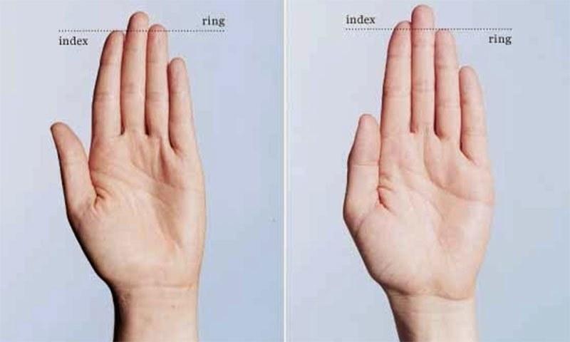ہاتھوں کی انگلی کی لمبائی اور کووڈ 19 کی شدت میں تعلق ہوسکتا ہے، تحقیق