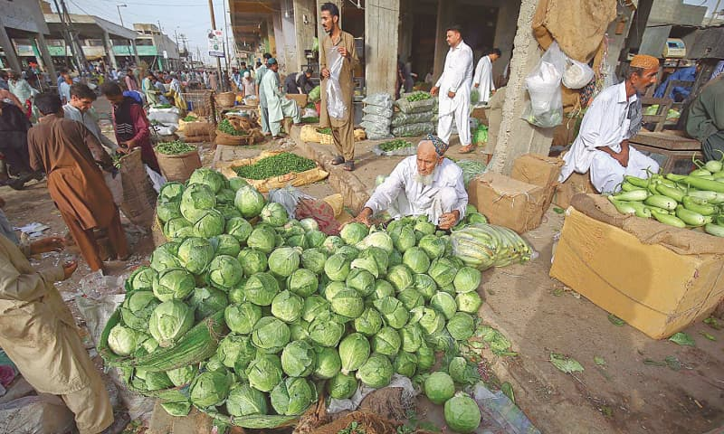 KARACHI: A vendor arranges cabbage at a vegetable market on Monday. Prices of vegetables including onions and tomatoes declined in urban areas of the country in May. –INP