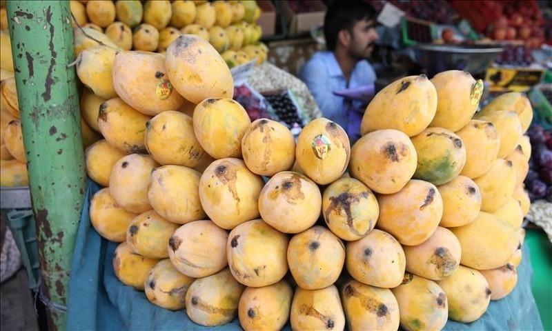 پاکستان کے آم ذائقے میں سب سے منفرد ہوتے ہیں—فائل فوٹو: اناطولو