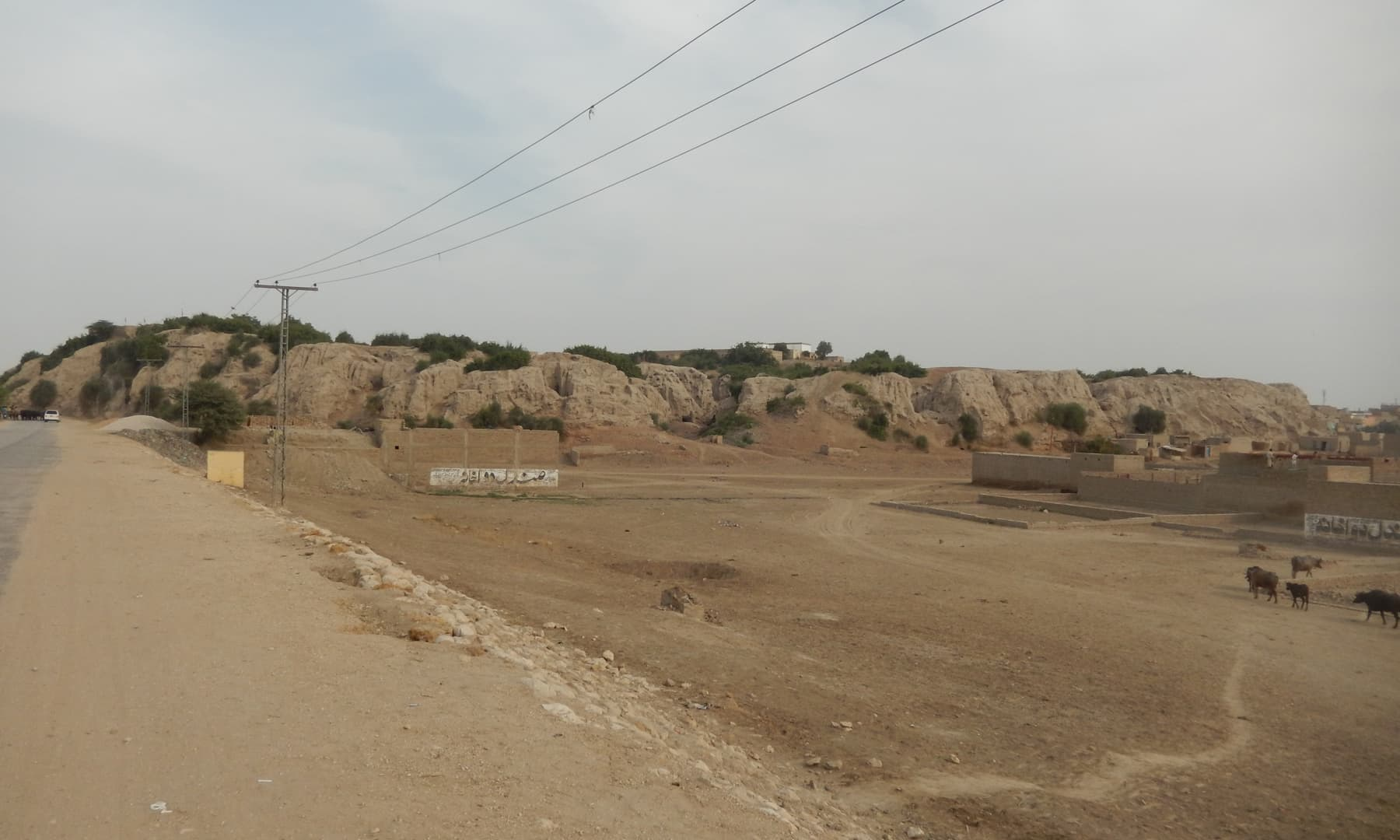 سیہون قلعہ