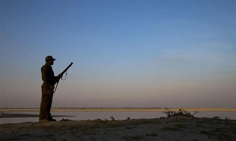 جنوبی ایشیا میں لاک ڈاؤن کے دوران غیر قانونی شکار عروج پر کیسے پہنچا؟