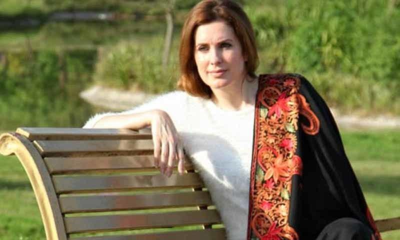 سنتھیا رچی کا پاکستان مخالف سرگرمیوں کی تحقیقات کرنے کا دعویٰ