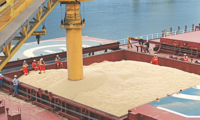 Employees work at a cargo ship loading soybeans to China at Tiplam terminal in Santos, Brazil.—Reuters file photo