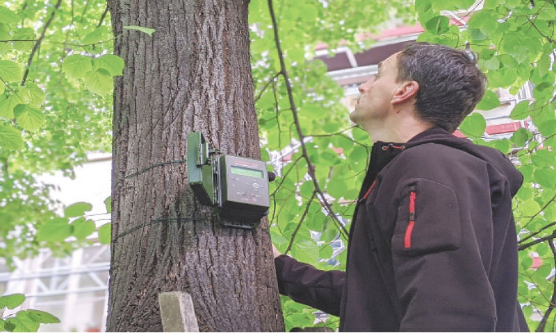 Paris: Jerome Sueur, an associate professor at the Natural History Museum, checks a sound-measuring device installed on a tree as part of the Silent Cities project.—AFP