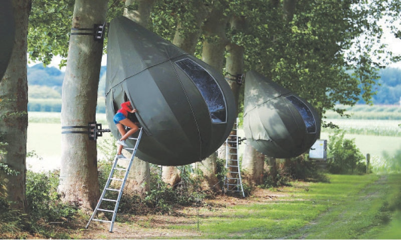 BRUSSELS: A guest climbs on a ladder to enter a tear drop-shaped tent hanging from a tree created by Dutch artist Dre Wapenaar, offering an unusual accommodation for tourists in the Belgian countryside, near Borgloon.—Reuters