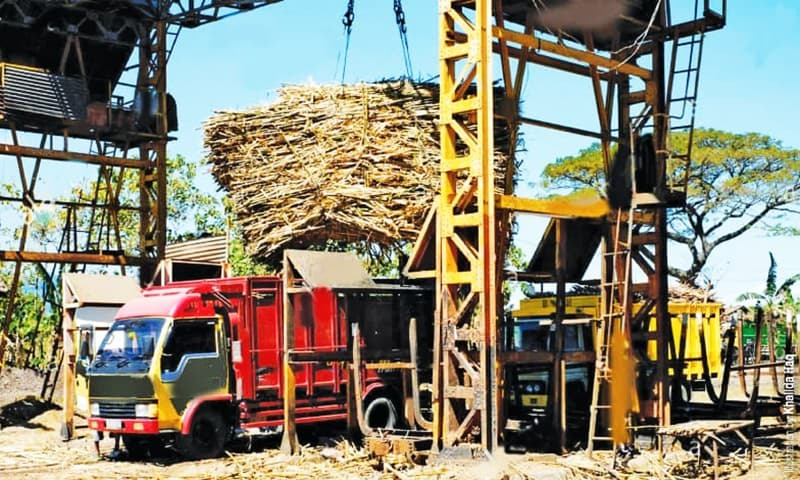 Govt in dock over sugar probe body's notification