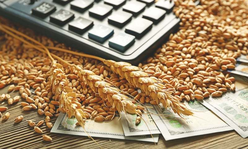 Efforts under way to ensure wheat supply at affordable prices: ministry