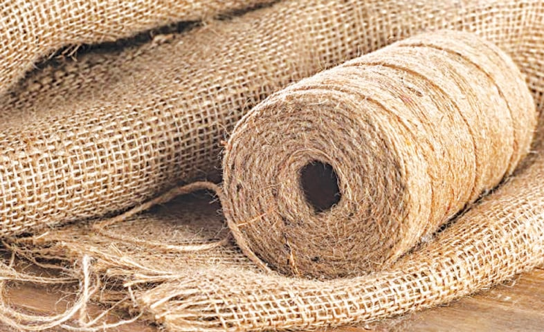Plan evolved to boost export of processed jute