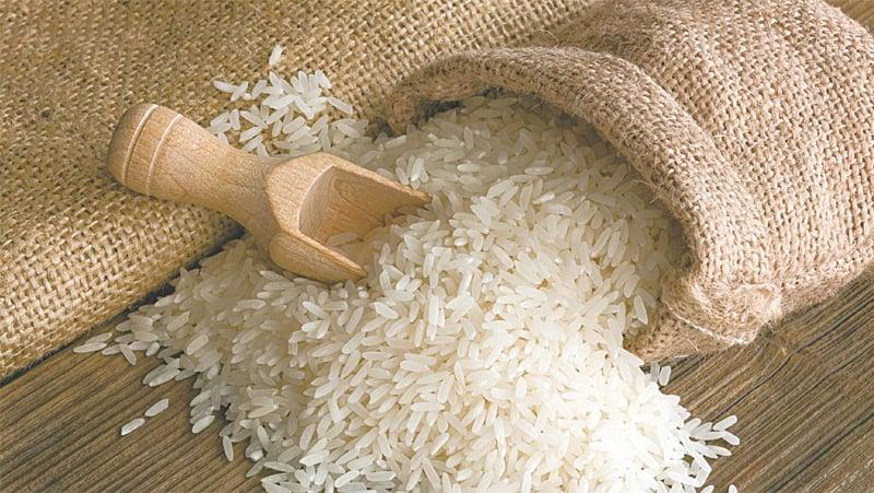 Exports to Qatar, Saudi Arabia rise despite Covid-19