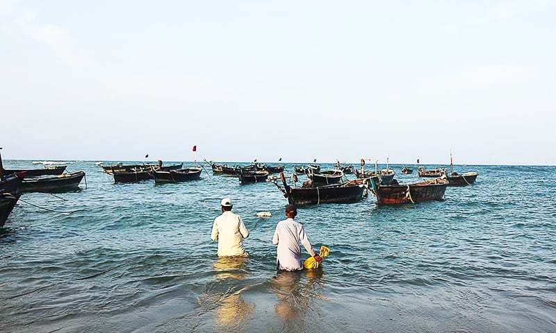 System to ensure safety of marine life, fisheries and fishermen in a fixed amount. — Dawn/File