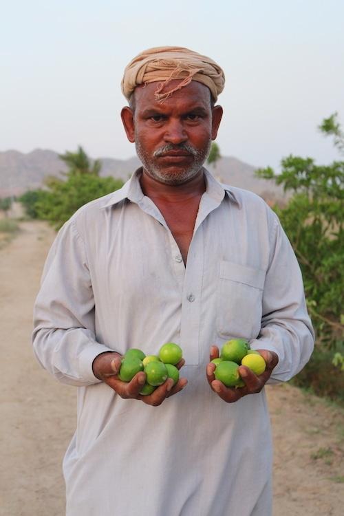 Khoso can grow berries, lemons, mangoes, pomegranates, watermelon and vegetables. — Photo by Zulfiqar Khoso