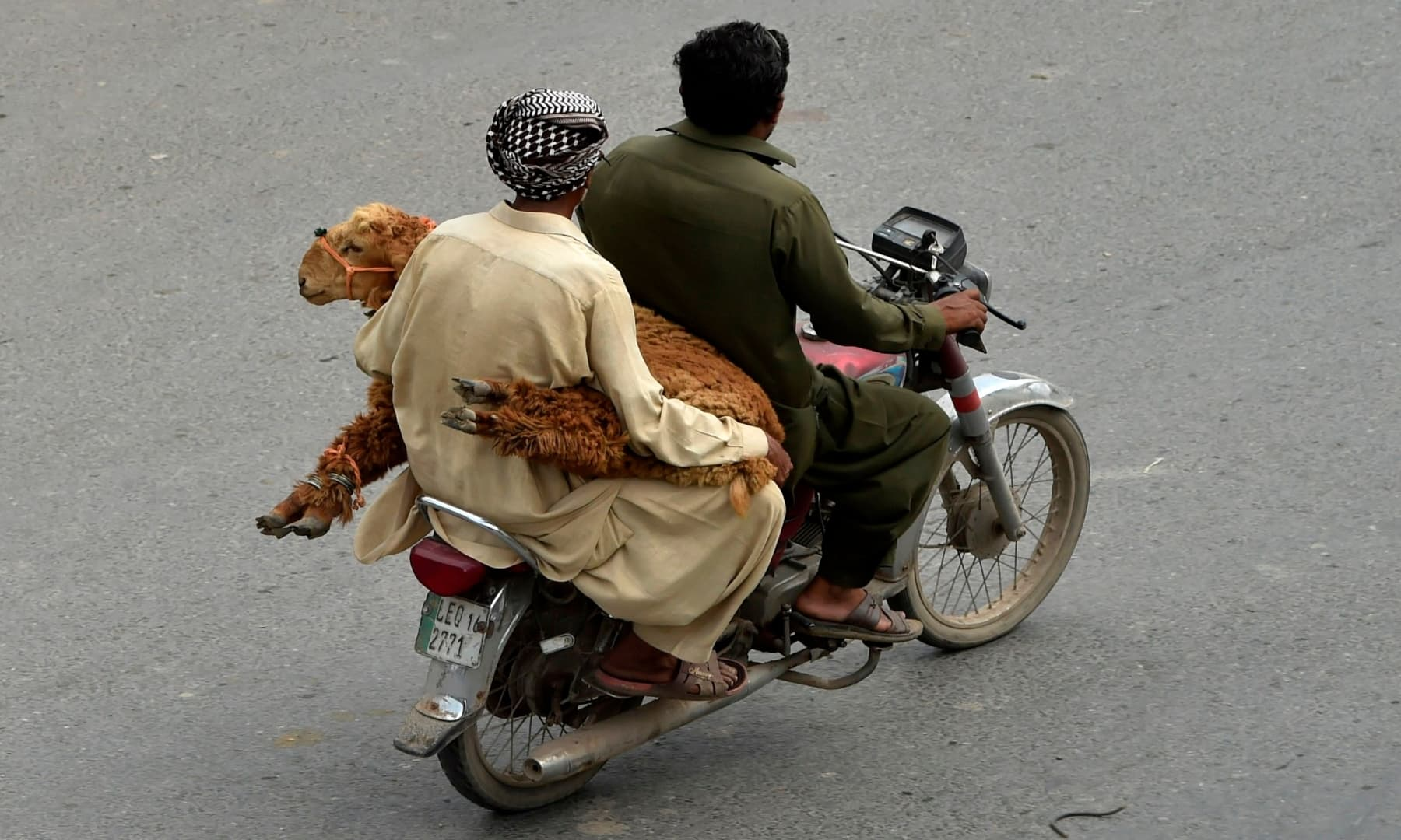 Men transport a sheep on a motorbike after buying from a livestock market for sacrificing on the eve of Eidul Azha, in Lahore on July 31, 2020. — AFP
