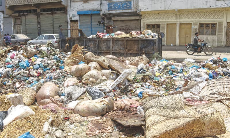 A heap of offal and other waste seen in Liaquatabad on Monday.—White Star