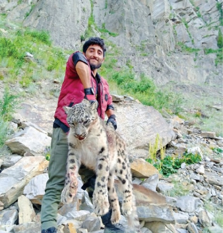 One of the poachers pictured with the carcass of the snow leopard near Hoper glacier. — Dawn