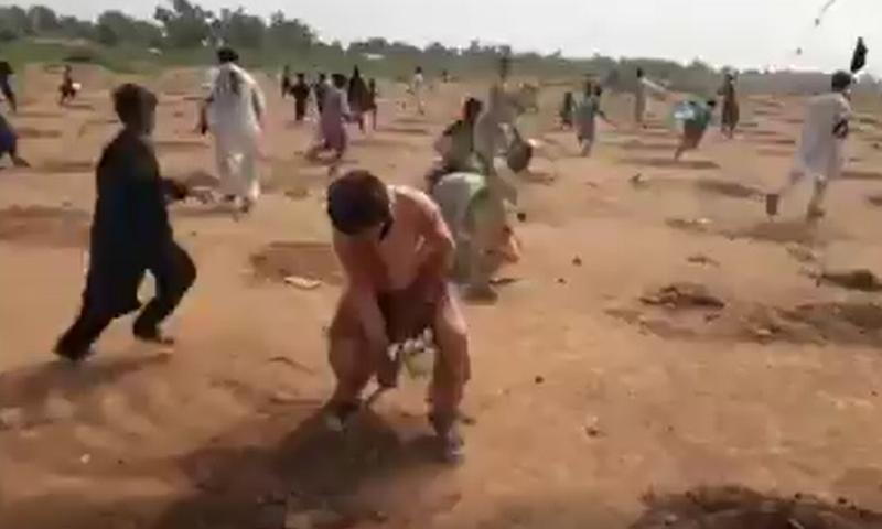 Protesters uproot saplings in Khyber's Bara Tehsil. — DawnewsTV