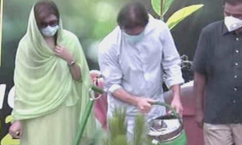 Prime Minister Imran Khan plants a sapling during a ceremony in Islamabad. — DawnNewsTV