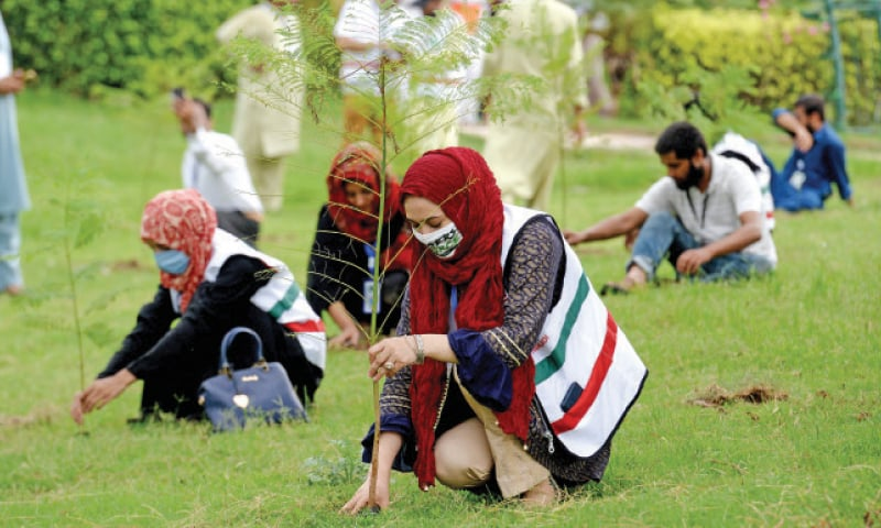 Tiger Force volunteers plant saplings in Allama Iqbal Park in Rawalpindi as part of the tree plantation drive on Sunday. — White Star