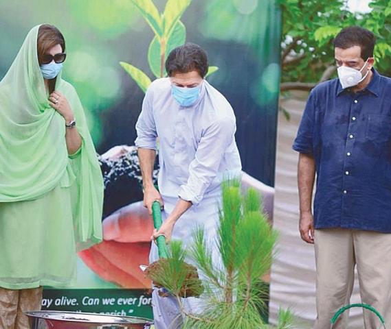 ISLAMABAD: Prime Minister Imran Khan planting a sapling at Banigala on Sunday.—Online