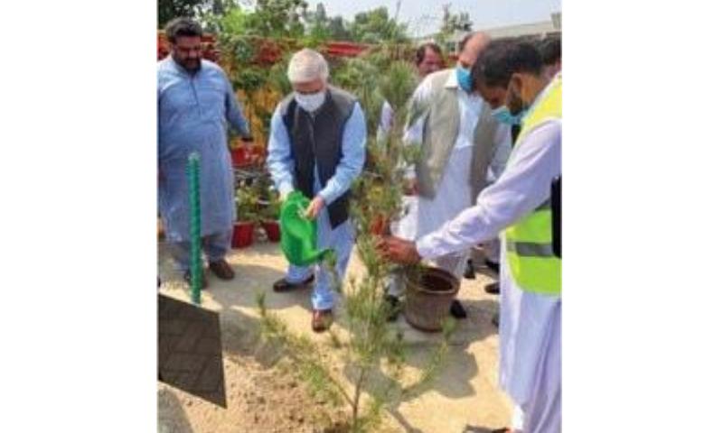 Chief Minister Mahmood Khan plants a sapling in Peshawar on Sunday. — Online