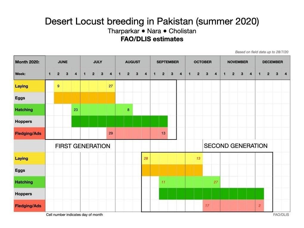 Chart courtesy: FAO