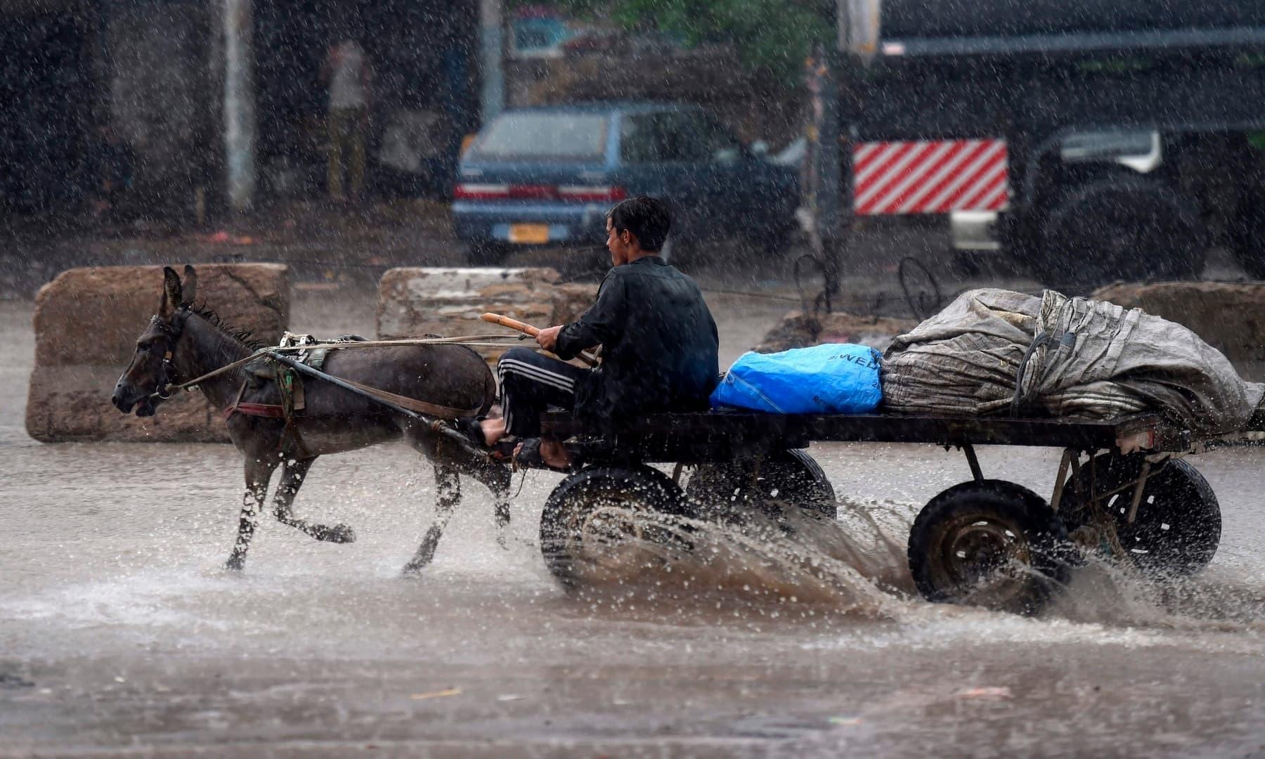 A man rides on a donkey cart during heavy monsoon rain in Karachi. — AFP