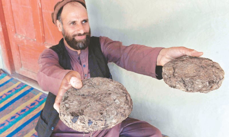 A 37-year-old farmer, Mohaiyudeen, shows packages of opium after harvesting it from his poppy fields in the Surkh-Rod district of Nangarhar province. — AFP