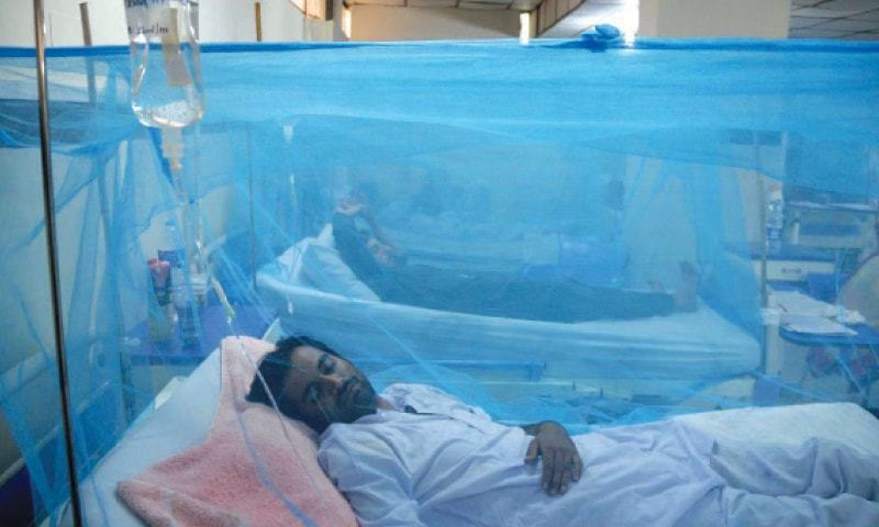 A senior district official told Dawn that seven people have tested positive for dengue in Rawalpindi, with four reported in August alone. — AFP/File