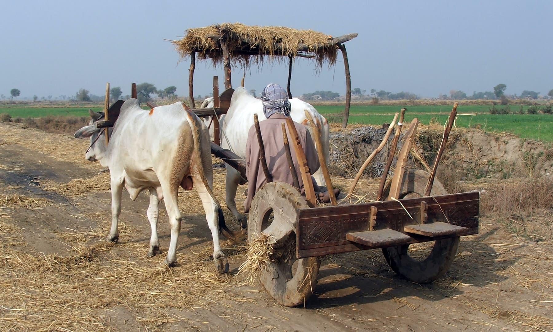 لکڑی کے پہیوں والی بیل گاڑی چرخ چوں چرخ چوں کرتی چیونٹی کی رفتار سے چلتی چند میل کا فاصلہ کئی گھنٹوں میں طے کرکے گاؤں پہنچاتی تھی