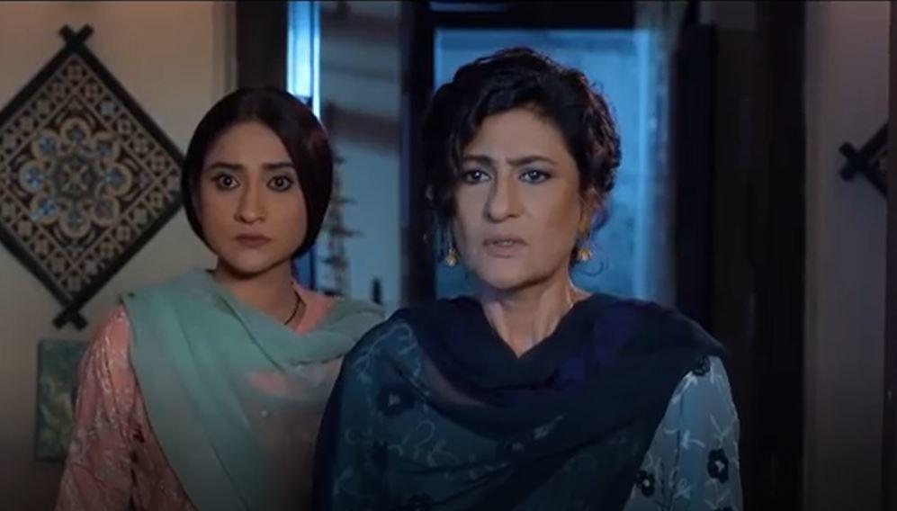 Saba Hamid is a tour de force as Riz's mother