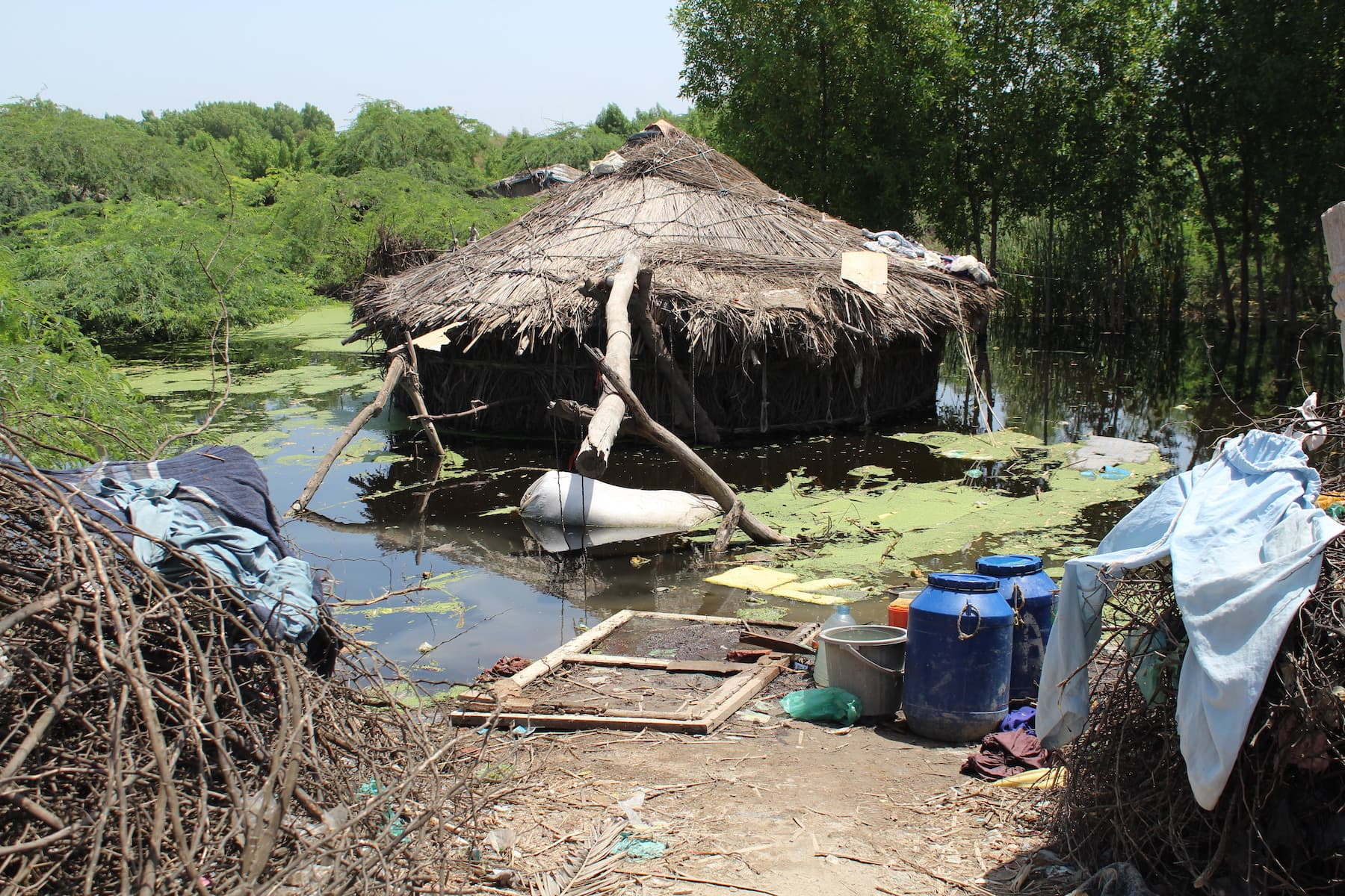 A submerged home in UC-1 of Mirpurkhas city. Hundreds of thousands of people have been forced to abandon their homes and take shelter in make-shift tents on the roads due to the flooding caused by the recent rains. — Photo by author