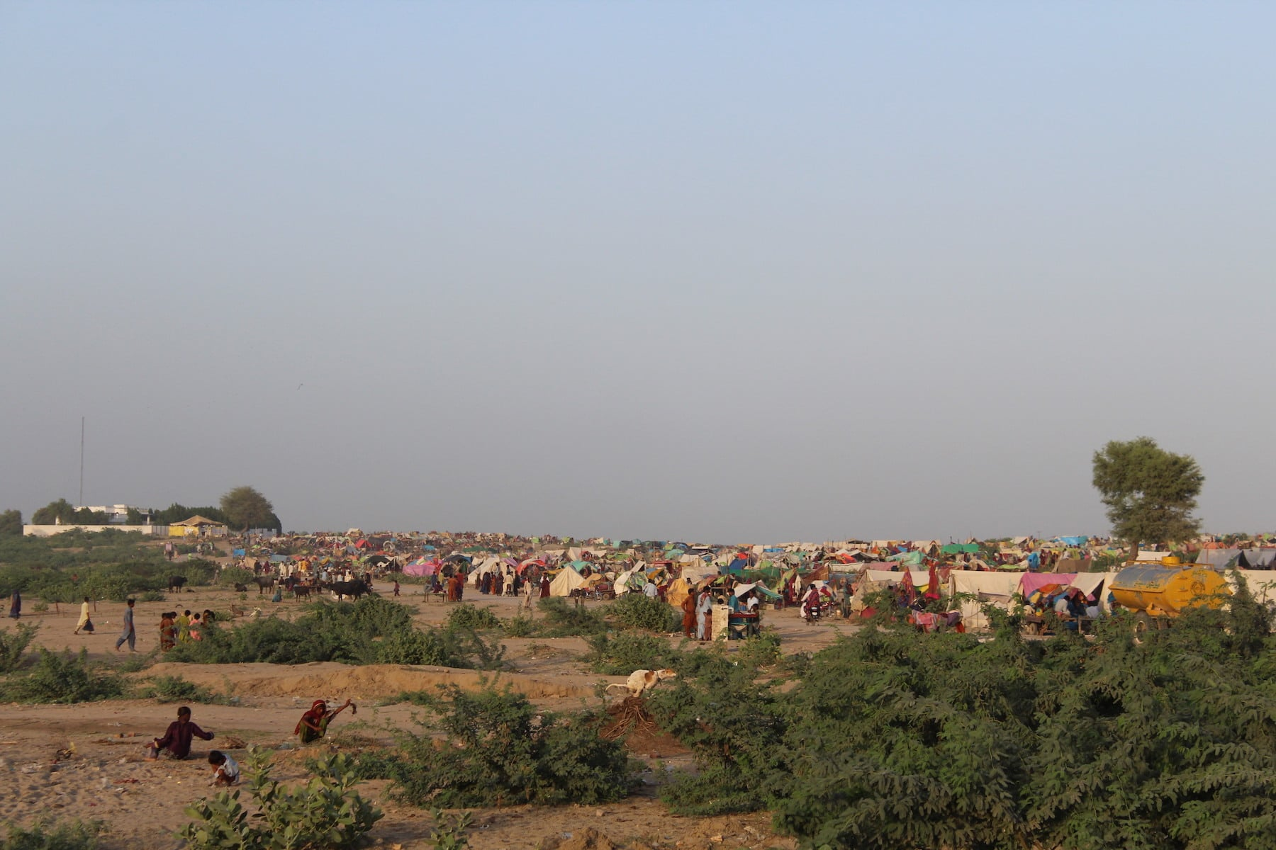 Another view of the tent city set up in Umerkot district by the Sindh government. Officials say they lack the resources to provide relief facilities to the vast majority but are trying their best. Affectees say it is not even scratching the surface. — Photo by author