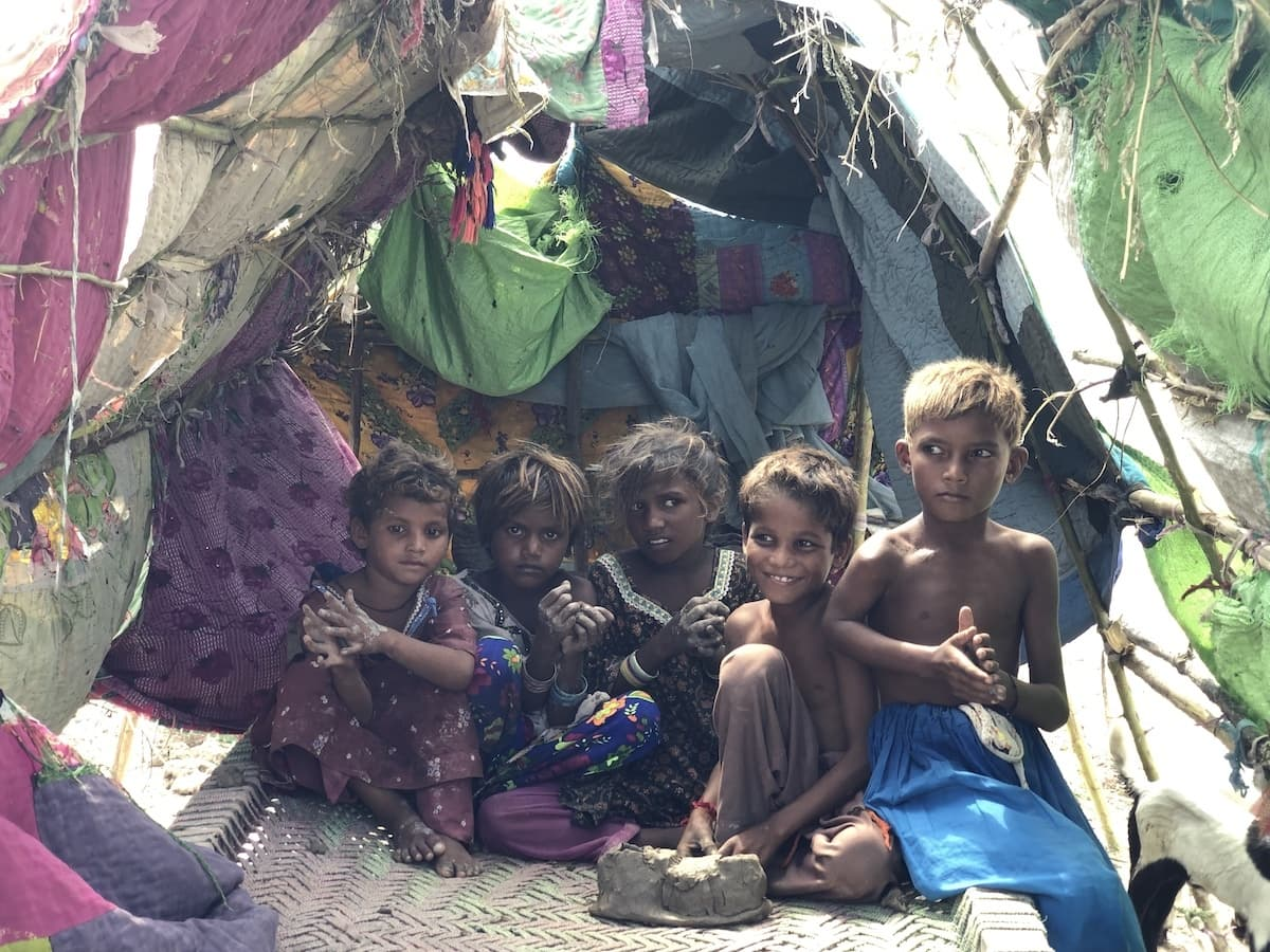 Children sit inside a makeshift tent in Pithoro, Umerkot district. The tents are made of plastic and cloth rags perched atop tree branches. — Photo by author