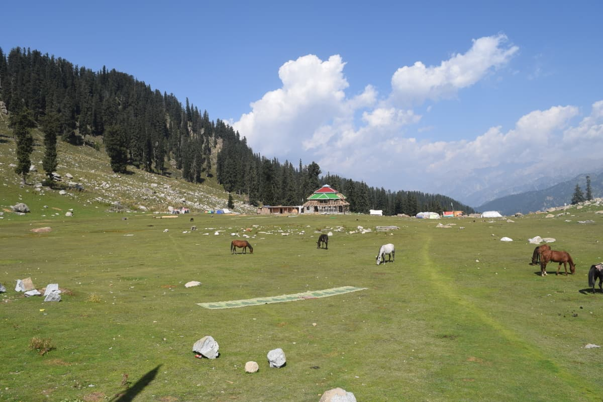 The Jahaz Banda meadows.