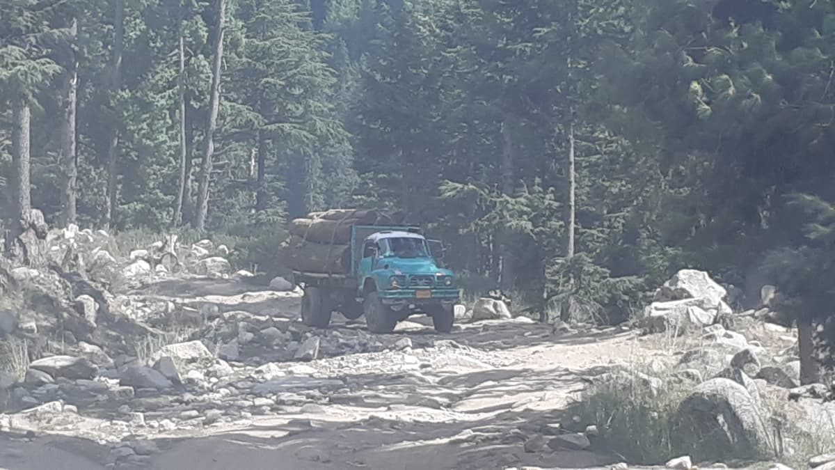 Timber laden trucks are a common sight in the Dir highlands.