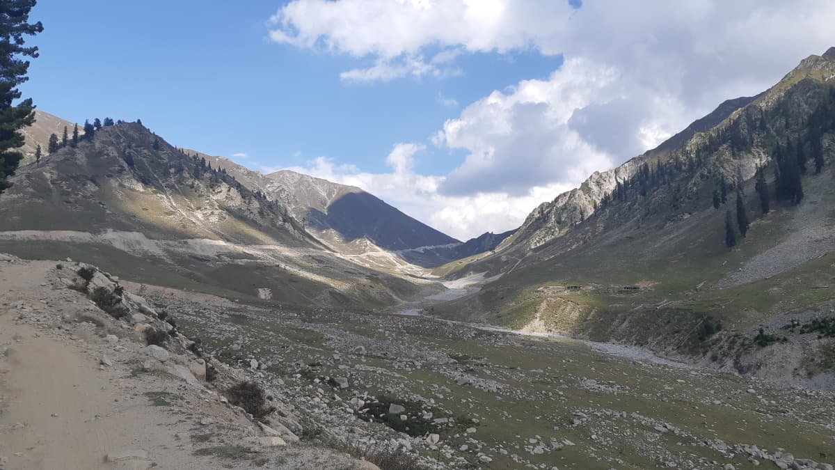 Above the tree line — on the way to Badawi top.