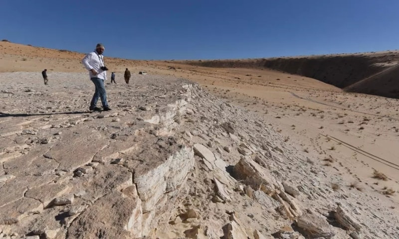 This handout photo shows a view of the edge of the Alathar ancient lake deposit and surrounding landscape. — AFP