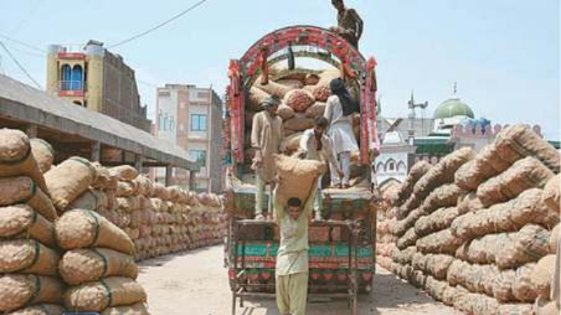 FAISALABAD: In file photo labourers are seen unloading onion bags from a delivery truck at Sabzi Mandi. — APP